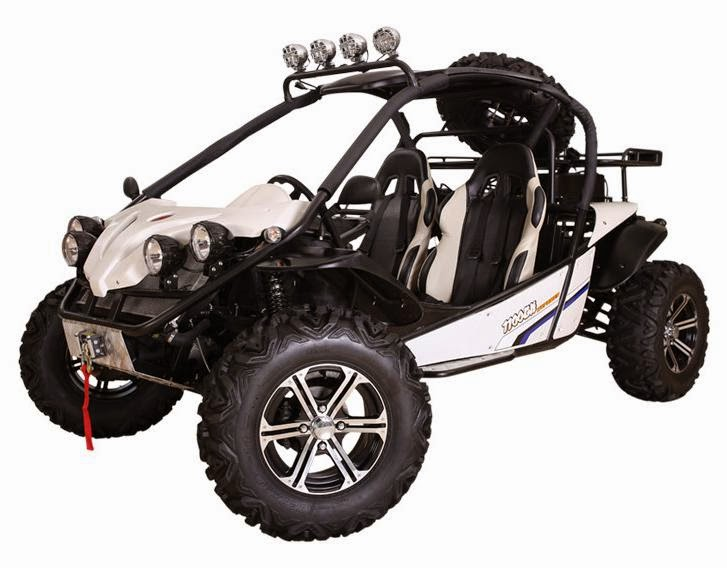 1100cc 650cc 800cc Offroad 4x4 4WD Dune Buggy
