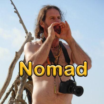 Robert Bergman (Nomad)