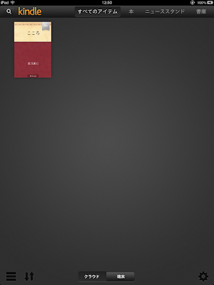 iPad mini 04 Kindle 01