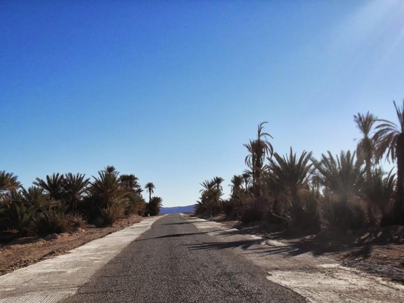 marrocos - Marrocos e Mauritãnia a Queimar Pneu e Gasolina - Página 11 DSCF1253