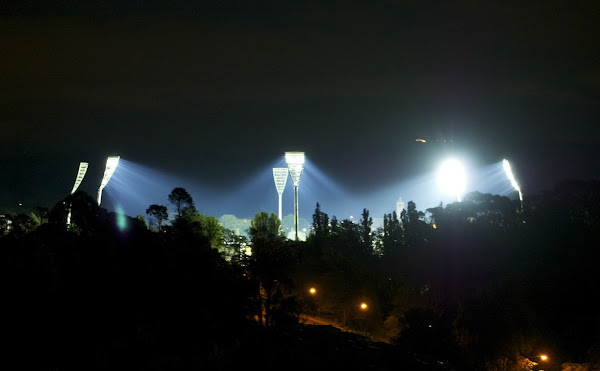 manuka lights