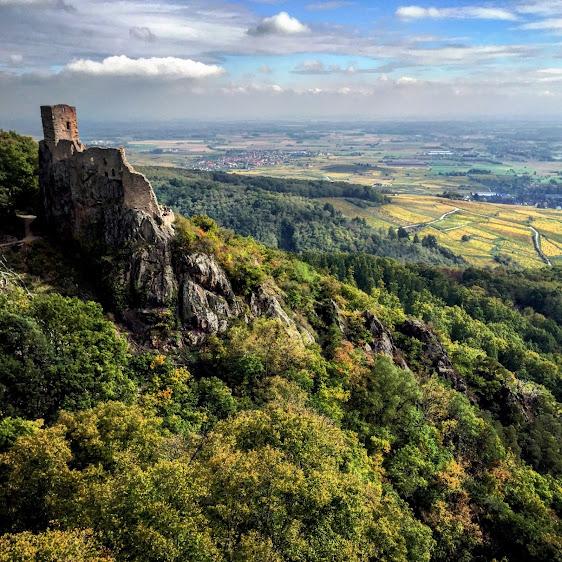 Ribeauvillé (Рибовиль), Эльзас, Франция