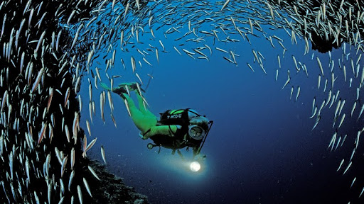 Scuba Diving Near Ari Atoll, Indian Ocean.jpg
