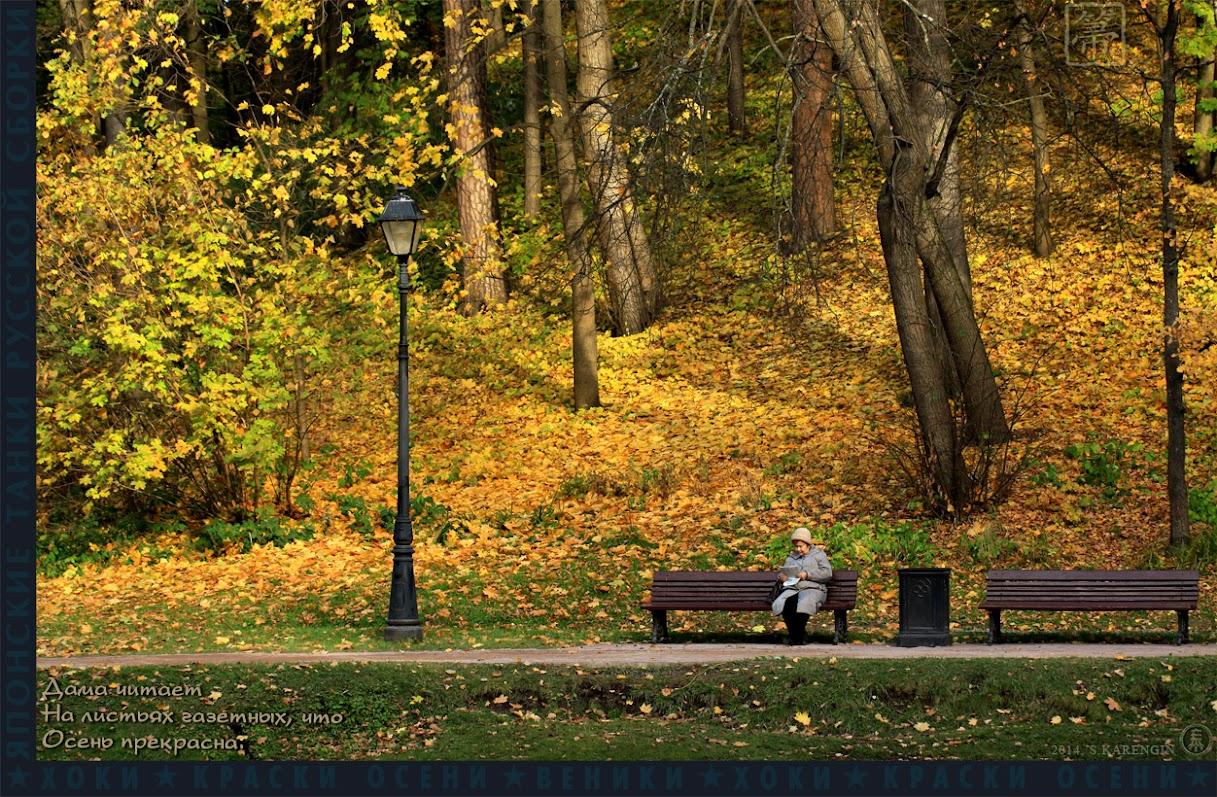 хоки, hoki, осень, autumn colors, краски осени, осенние листья,
