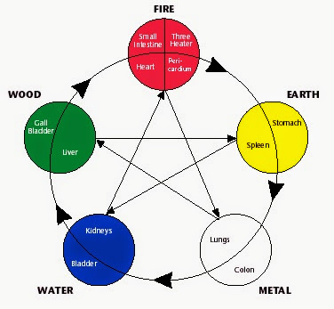 equilibrio chakra animali