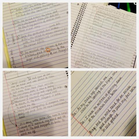 Catch 22 essay