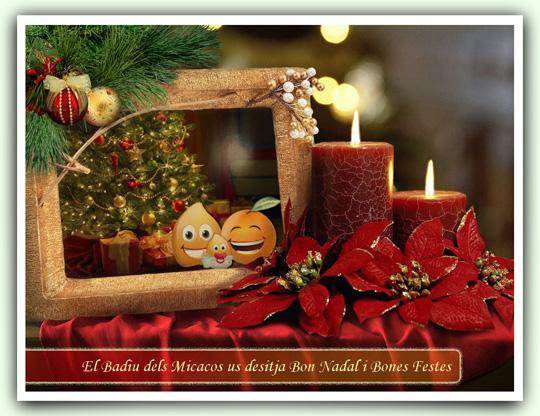 Felicitació Nadals 2011