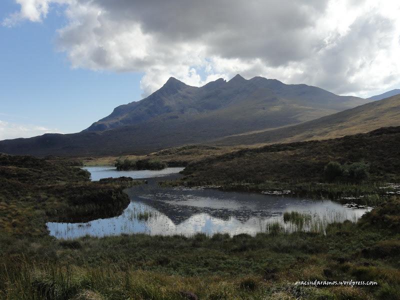 - Passeando até à Escócia! - Página 15 DSC04254