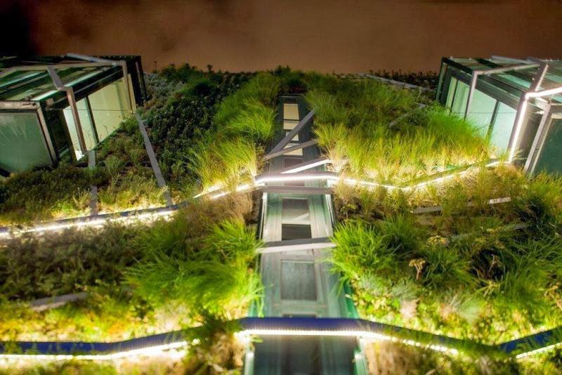 Fachada vegetal iluminación nocturna