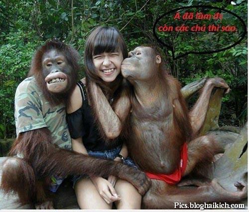 Chùm ảnh vui động vật sờ ngực, bóp vếu phụ nữ hài VL