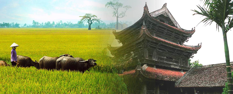Những bài thơ tình yêu viết về Thái Bình quê hương