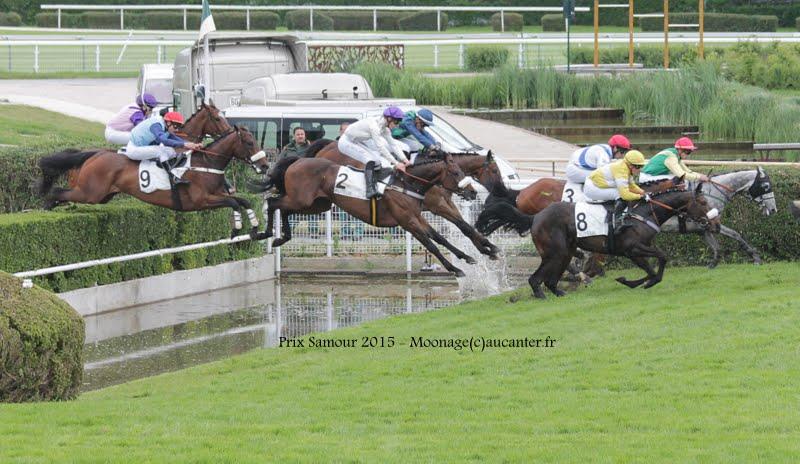 Photos Auteuil 16-05-2015 Week-end printanier de l'obstacle  IMG_9577