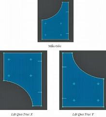 lật đối xứng chi tiết qua trục x y
