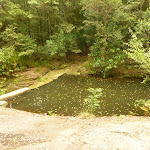 Boarding House Dam near Watagans Forest Rd in the Watagans (322499)