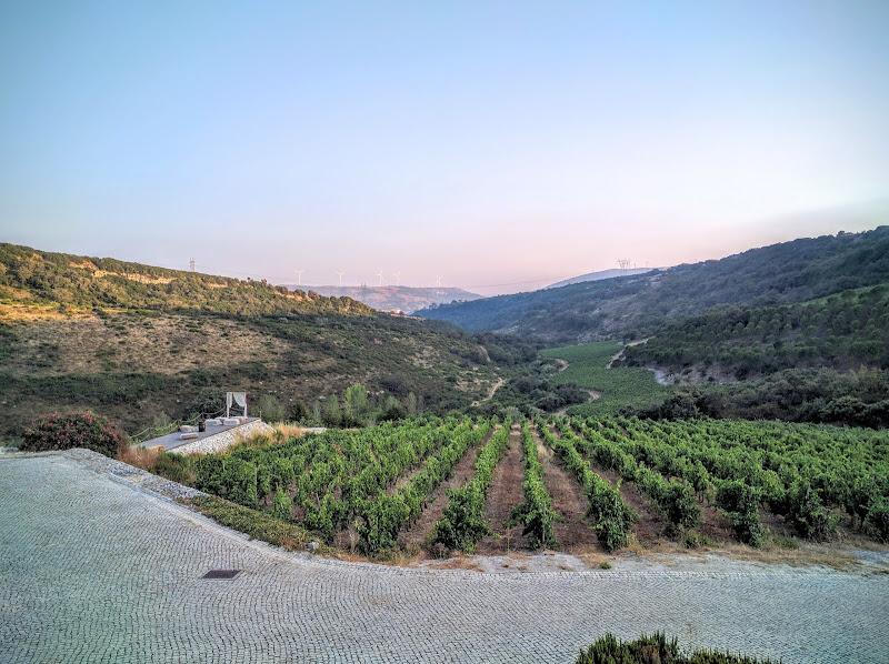 Main image of Quinta da Murta