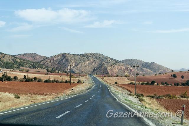 Nallıhan Beypazarı arasındaki çorak dağlar ve Karasal iklim bitki örtüsü