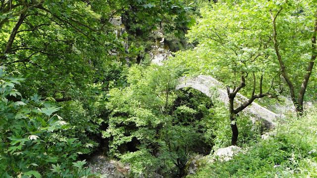Το γεφύρι των Αγράφων