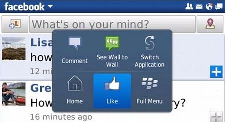 Free download Facebook application social network for Blackberry.