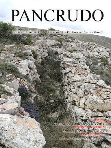 Portada Revista Pancrudo nº15 (2011). Trincheras en el Alto de la Hoya del Reajo de Pancrudo (Pascual Tolosa Sancho)