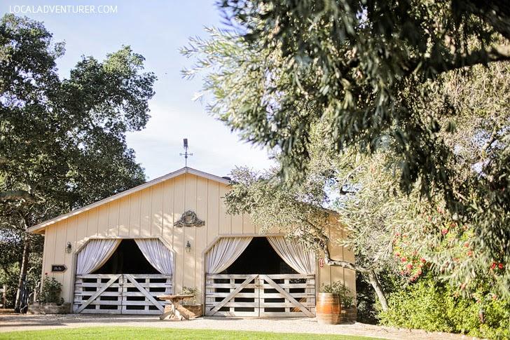 Wine Vineyards Carmel California.