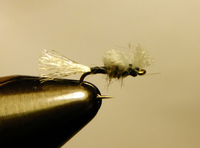 Bluff Country Flies Simpleton Midge