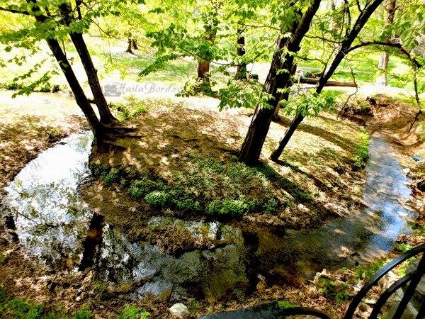 peisaj parcul de sub arini sibiu