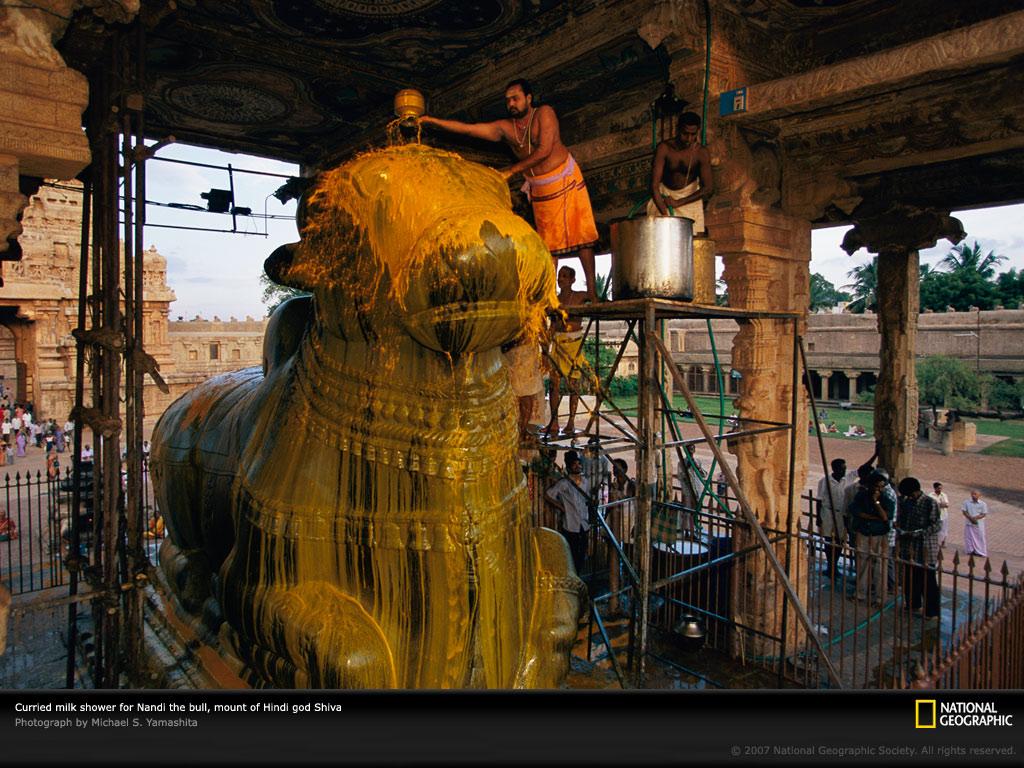 Nandishwara Yantra by Brahmanda Guruji Shri Narendra Babu Sharmaji