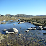 Upper Snowy River (265697)