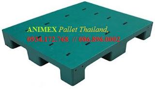 Pallet nhựa mặt bít nhập khẩu Thái Lan