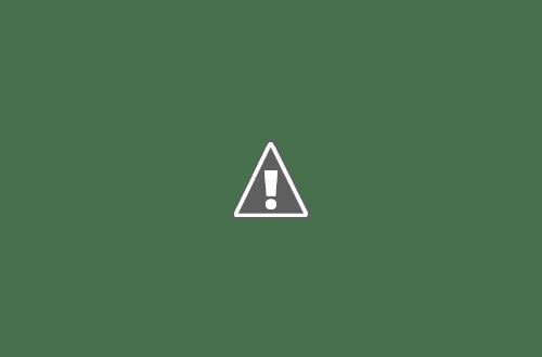 18 05 2013 30+copy - Кошки ))