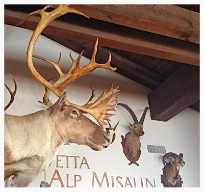 Sankt Moritz - Engandina