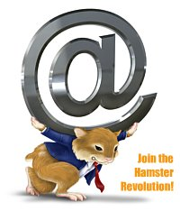 The Hamster Revolution: Outlook Email Tips & Tricks
