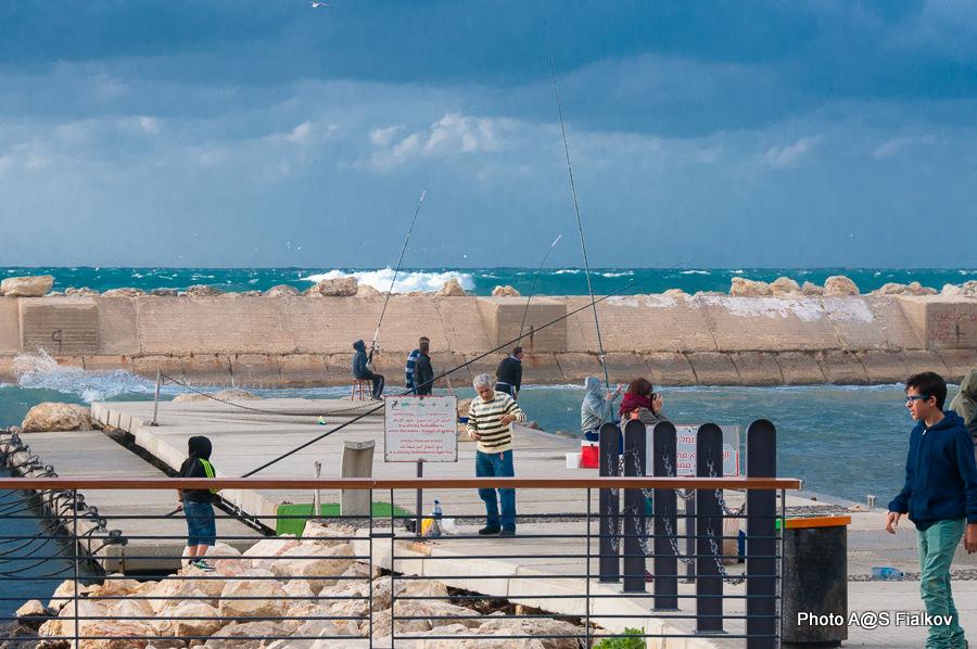 Порт Яффо. Экскурсия в Яффо. Гид в Израиле Светлана Фиалкова.