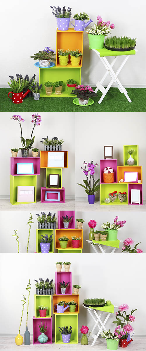 Stock Photo: Beautiful colorful shelves with different home related objects