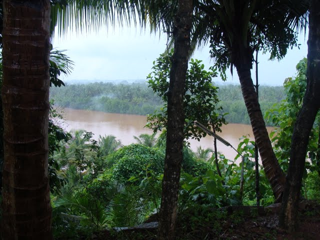 River Pavanje
