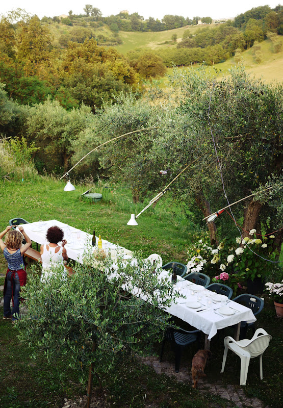 Oliveto in Mogliano