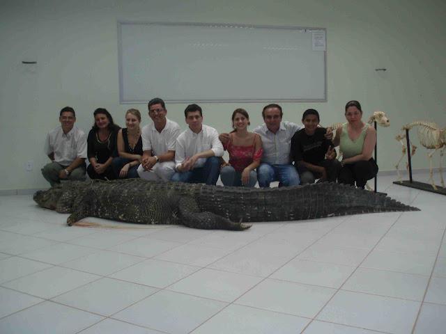Questões e Fatos sobre Crocodilianos gigantes: Transferência de debate da comunidade Conflitos Selvagens.  - Página 3 4%252C10M