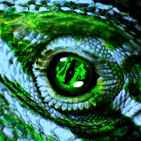 WT Gator
