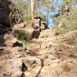 Steep track east of Kariong Brook (197211)