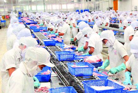 Đơn hàng chế biến thủy sản cần 9 nữ thực tập sinh làm việc tại Toyama Nhật Bản tháng 03/2017