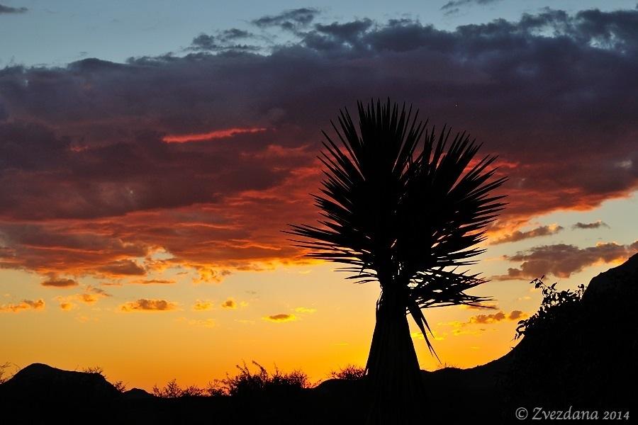 Namibia+2014_036.JPG