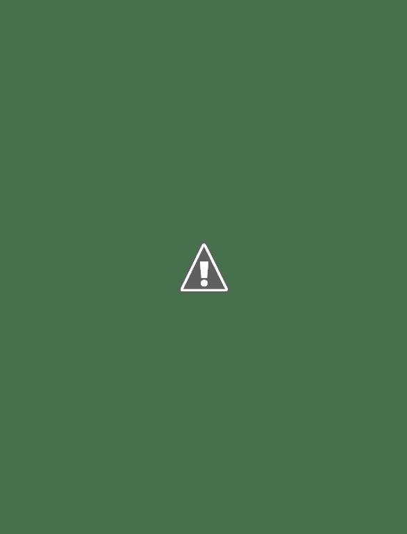 [Chaos SM : Projet/Conversion] Black Legion / World Eaters / Death Guard SAM_3967