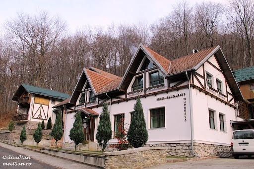Motel Dumbrava