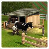 """Загон для молочного скота """"Доить-не передоить"""""""