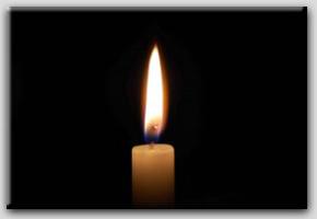 Ayrılık Töreni - Elif Şebnem Akal