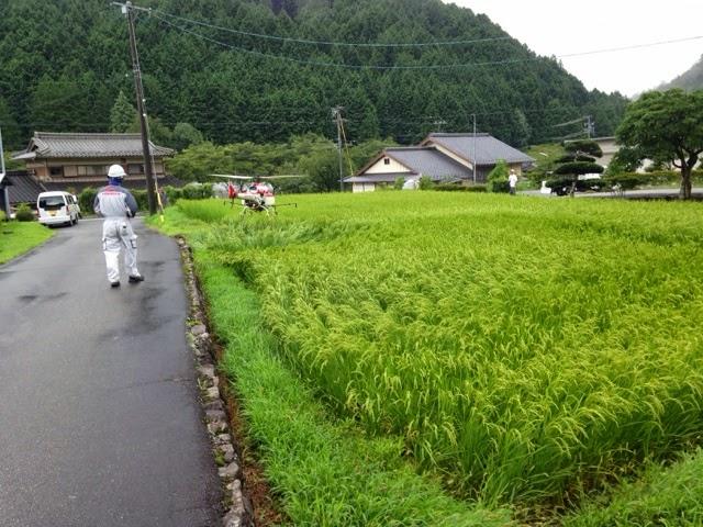 早朝5時からの散布に同行させていただきました。安全と、住民住居への細心の... 岐阜県白川町議会