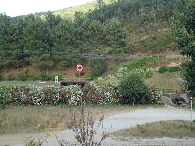 Long Way to....Faro 2011   DSC02534