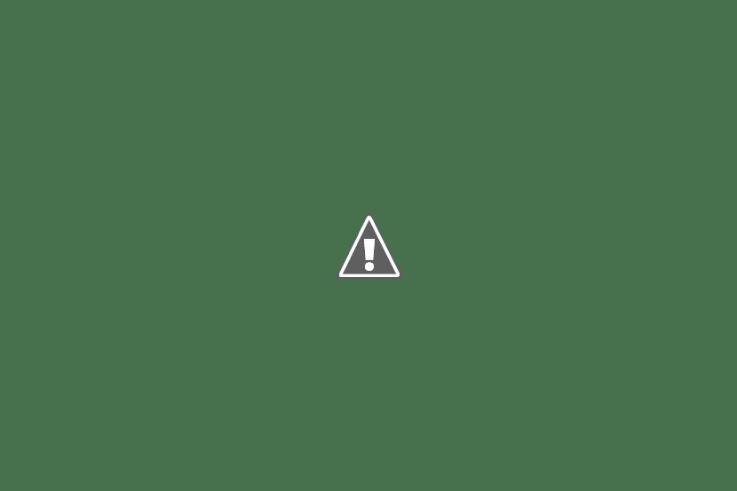 автотекла для грузовых автомобилей