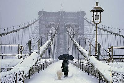Cai neve em Nova Iorque | New York Snow Gif