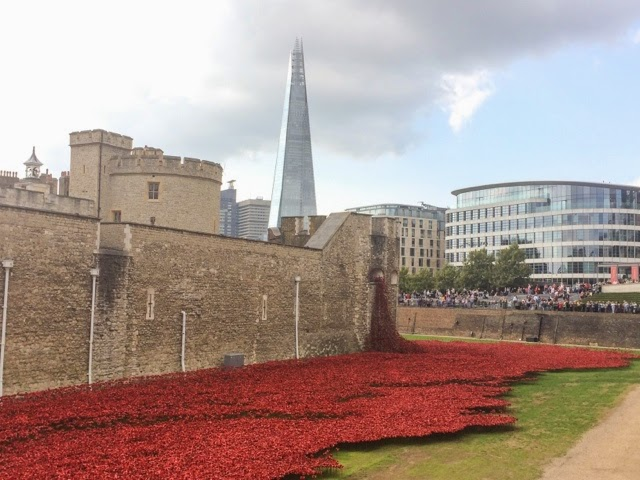 tower-of-london-poppies